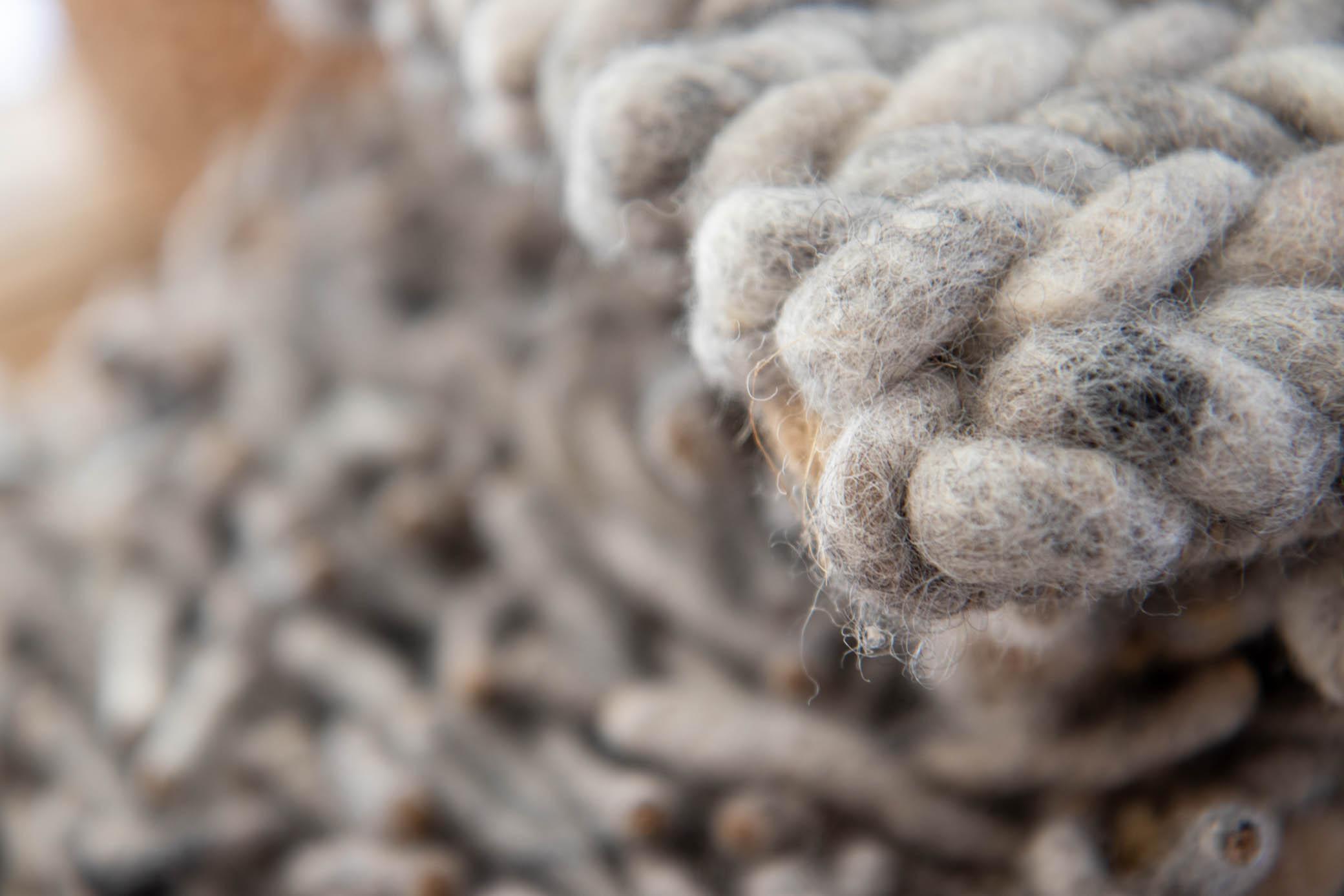 duurzaam wonen wol